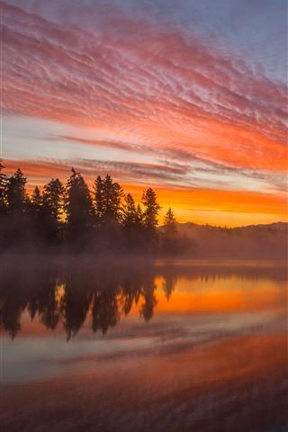 iPhone Обои Озеро, деревья, туман, закат, туманные