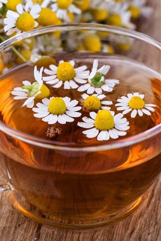 iPhone Обои Одна чашка цветочного чая, ромашка