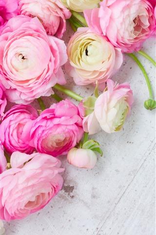 iPhone Fond d'écran Fleurs roses Ranunculus, planche à bois
