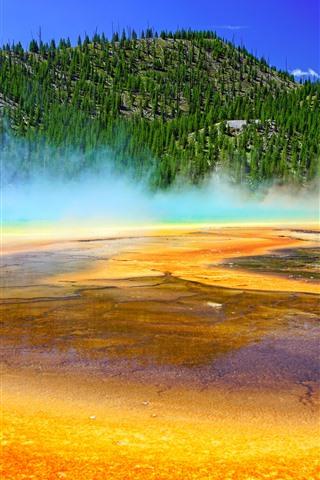 iPhone Обои Йеллоустонский национальный парк, горы, деревья, озеро, туман, США